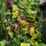 16 Space-Saving Vertical Garden Ideas